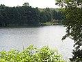 Nad Jeziorem Zaleskim - panoramio (1).jpg