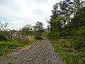 Nakano Iwaizumi, Iwaizumi-chō, Shimohei-gun, Iwate-ken 027-0501, Japan - panoramio (23).jpg