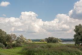 Nationalpark Unteres Odertal 02.jpg
