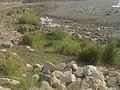 Navidhand Ayaz 25 - panoramio.jpg