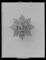 Nederländska Lejonorden miniatyrkraschan - Livrustkammaren - 27902.tif