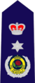 New South Wales State Emergency Service insignia - Commissioner.png
