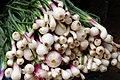 Nigerian Spring Onion.jpg