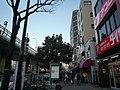 Nipponbashi - panoramio - DVMG (22).jpg