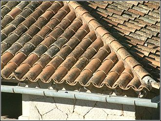 Monk and Nun - A roof of Monk and Nun tiles