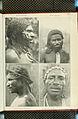 Nova Guinea - Vol 7 - Ethnographie - 1913 - Tafel 52.jpg