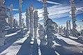 Np-winter.jpg