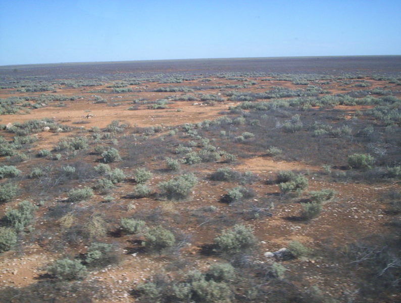 File:Nullabor plain from the indian pacific.jpg