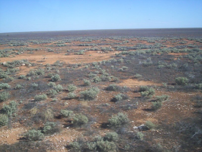Nullabor plain from the indian pacific