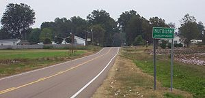 Unincorporated area - Nutbush, an unincorporated area in Haywood County, Tennessee