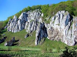 Kraków-Częstochowa Upland - Polish Jura, Glove Rock (Skała Rękawica) at Ojców National Park