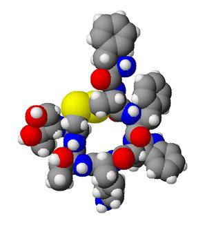 Octreotide - Image: Octreotide 3d