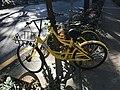 Ofo Bicycle in Nanshan, Shenzhen, Guangdong.jpg