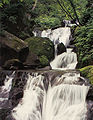 Oirase Waterfall Cropped.jpg