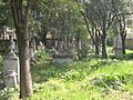 Old English Cemetery Livorno overview3.jpg