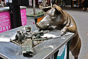 English: Oliver the pig eating from a bin in t...