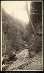 Oneonyl Gorge, Columbia River, C.R. Savage Photo..jpg
