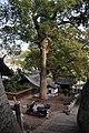 Onomichi 尾道 - panoramio (1).jpg