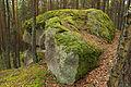 Opferstein bei Langschlag 03 2014-08 NDM ZT-098.jpg