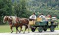 Ossiacher Tauern Rindfleischfest Kutschenfahrt 13082006 05.jpg