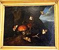 Otto marseus van schriek, sottobosco con funghi, farfalle e serpente, 1650-78 ca..JPG