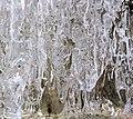 Outdoor Ice in Nature 08.jpg