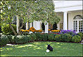 Oval Office view from Rose Garden.jpg