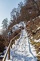 Pörtschach Leonstein Gloriettenweg Waldwanderweg Ostteil 21012017 6166.jpg