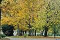 PL-PK Mielec, Park Oborskich 2013-10-13--16-32-53-001.jpg
