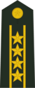 Полковник комендант
