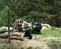 Paintball-woodland.jpg