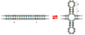 Palindrome of DNA structure.PNG