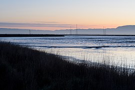 Palo Alto Baylands February 2013 001.jpg