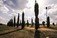 Parco di Centocelle -Roma.jpg