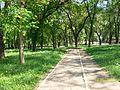 Parcul Central, BL.jpg