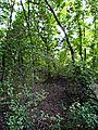 Park prirode Kamaraš13.JPG