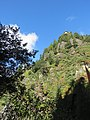 Paro Taktsang, Taktsang Palphug Monastery, Tiger's Nest -views from the trekking path- during LGFC - Bhutan 2019 (104).jpg