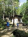 Paro Taktsang, Taktsang Palphug Monastery, Tiger's Nest -views from the trekking path- during LGFC - Bhutan 2019 (319).jpg