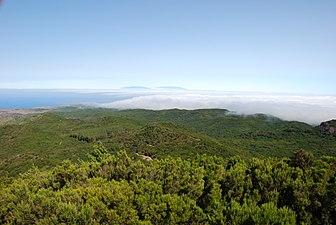 Parque Nacional Garajonay.jpg