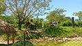Parque Temático Hacienda Nápoles 50.jpg