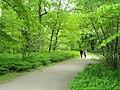 Path - Frederiksberg Have - Copenhagen - DSC09189.JPG
