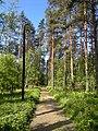 Path - panoramio (7).jpg