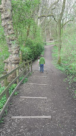 Path behind the dam, Worsley - geograph.org.uk - 1759403