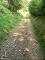 Path down to Court Farm - geograph.org.uk - 53648.jpg