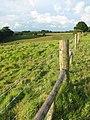 Path following stock fence - geograph.org.uk - 1344199.jpg