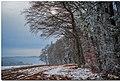 Paysage hivernal au-dessus de Gimel.jpg