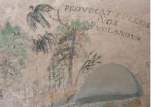 Fragment de peinture murale xvii e , coupole, église sainte-agathe