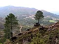 Peneda-Gerês National Park, Portugal (5145019935).jpg