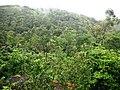 Perumedu - panoramio (2).jpg