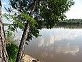 Pervomaysky District, Tomsk Oblast, Russia - panoramio (67).jpg